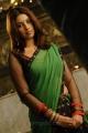 Murattu Singam Actress Richa Gangopadhyay Hot Saree Pics