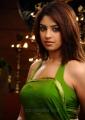 Richa Gangopadhyay in Saree Hot Photos in Murattu Singam
