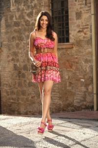 Telugu Actress Richa Gangopadhyay Hot Pics in Mirchi