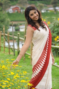 Sarocharu Actress Richa Gangopadhyay Hot Saree Photos