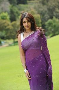 Telugu Actress Richa Gangopadhyay Hot Saree Photos