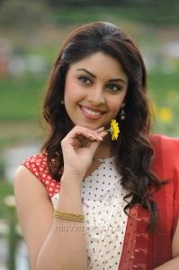 Sarocharu Movie Actress Richa Gangopadhyay Saree Photos