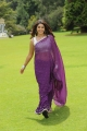 Telugu Actress Richa Gangopadhyay Hot Saree Photos