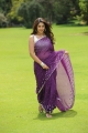 Actress Richa Gangopadhyay Saree Hot Photos in Sarocharu Movie