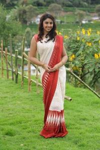Actress Richa Gangopadhyay Saree Photos in Sarocharu Movie