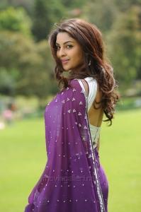 Sarocharu Actress Richa Gangopadhyay Hot in Saree Photos