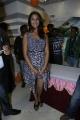 Actress Richa Gangopadhyay @ Micromax Canvas HD 4 Launch