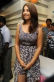 Richa Gangopadhyay Hot Pics @ Micromax Canvas 4 Launch