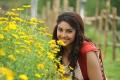 Actress Richa Gangopadhyay New Pictures in Sarocharu Movie