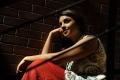Actress Richa Gangopadhyay Stills in Sir Vacharu Movie