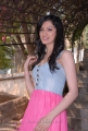 Actress Richa Panai Hot Stills in Pink Skirt