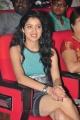 Richa Panai Hot Pictures at Mahesh Audio Release