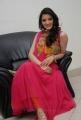 Beautiful Richa Panai in Pink Dress at Yamudiki Mogudu Audio Release Function