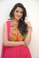 Yamudiki Mogudu Actress Richa Panai Cute Photo Shoot Pics