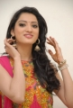 Yamudiki Mogudu Heroine Richa Panai Cute Photo Shoot Stills