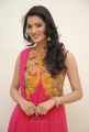 Yamudiki Mogudu Actress Richa Panai Cute Photo Shoot Stills