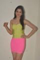 Telugu Actress Richa Panai Hot Photo Shoot Stills in Yellow Top