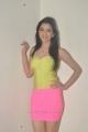 Richa Panai Hot Photo Shoot Stills in Yellow Top & Pink Skirt