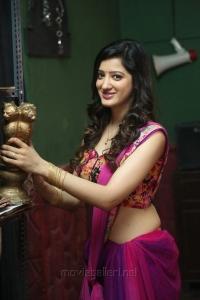 Rakshaka Bhatudu Movie Actress Richa Panai Hot Stills