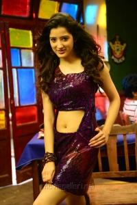 Rakshaka Bhatudu Heroine Richa Panai Hot Stills
