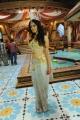 Telugu Heroine Richa Panai Hot Stills