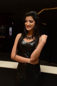 Actress Richa Panai Images @ Kavvintha Audio Release
