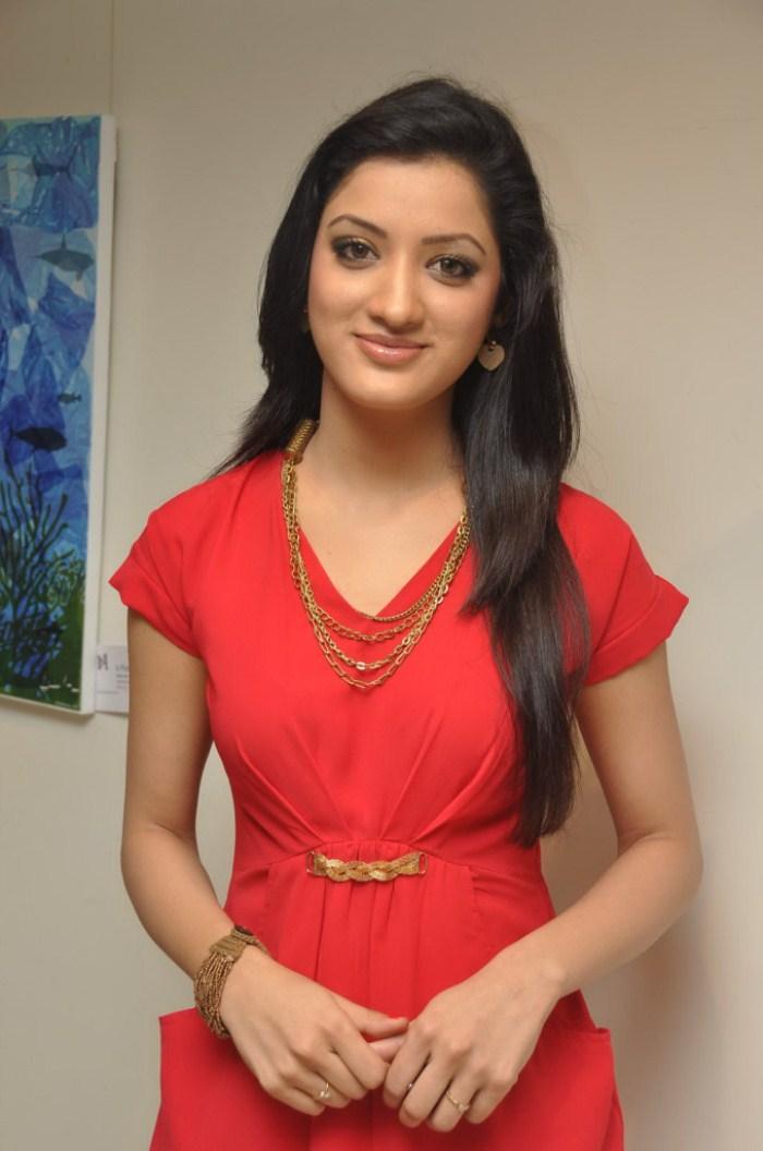 Picture 380634 | Actress Richa Panai at Red Code Countdown Art ...