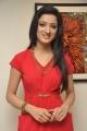 Telugu Actress Richa Panai in Hot Red Dress Photos