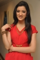 Richa Panai Latest Photoshoot Stills in Hot Red Dress