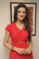 Richa Panai Latest Photoshoot Stills in Red Dress