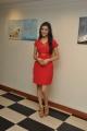 Richa Panai in Red Dress Photoshoot Stills