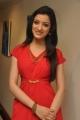 Telugu Actress Richa Panai Hot in Red Dress Photos