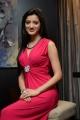 Actress Richa Panai Photos @ Player Poster Launch
