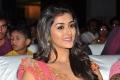 Actress Pooja Jhaveri @ Right Right Audio Release Photos