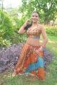 Tamil Actress Item Girl Risha Hot Photos