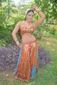 Sadhikkalam Thozha Movie Item Girl Risha Hot Stills