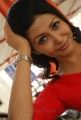 Yen Intha Mayakkam Heroine Rithiya Photo Shoot Pics