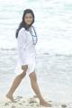 Ritu Barmecha New Hot Stills