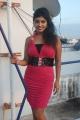 Rohini Subbaian Hot Stills