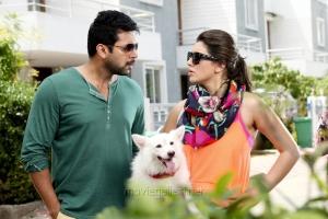 Jayam Ravi, Hansika Motwani in Romeo Juliet Latest Stills