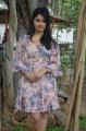 Actress Poonam Bajwa @ Romeo Juliet Movie Press Meet Stills