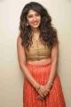 Actress Roshini Prakash New Photoshoot Stills