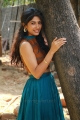 Yemaali Movie Actress Roshini Prakash HD Pics