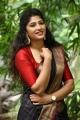 Jada Movie Actress Roshini Prakash Silk Saree Images