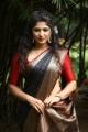 Actress Roshini Prakash Saree Images @ Jada Movie Audio Launch