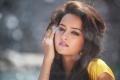 Actress Shanvi Srivastava in Rowdy Movie Hot Song Stills