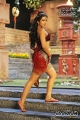 Actress Catherine Tresa as Annambika in Rudramadevi Movie Posters