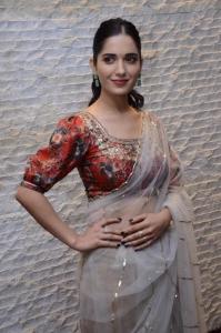 Nootokka Jillala Andagadu Actress Ruhani Sharma New Pics