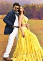 Balakrishna, Vedhika in Ruler Movie HD Images