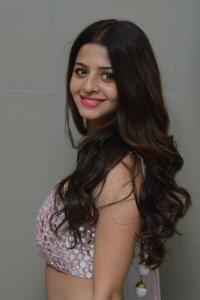 Vedhika @ Ruler Movie Success Meet Stills